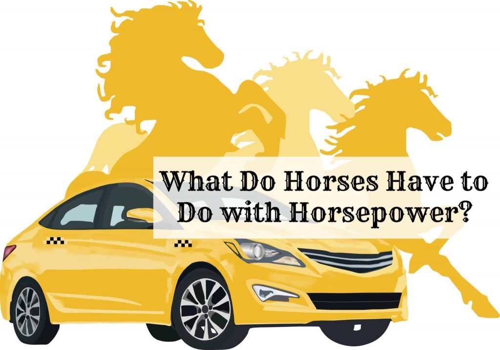 WHAT DO HORSES HAVE TO DO WITH HORSEPOWER